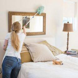 izmir ev temizliği